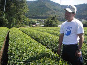 お茶畑と、若旦那の高梨孝さん。