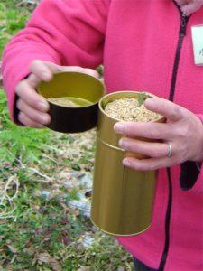 金属の缶には、おがくずといっしょに炭にしたいものを入れます。