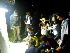 ライトトラップで夜の昆虫観察も行いました
