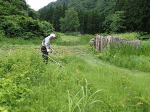 大明神の真ん中にある通称大岩の回りを刈る和義さん