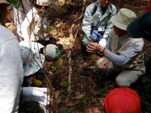 山菜採りの説明を聞く参加者たち。