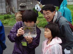 コオイムシを観察している参加者。