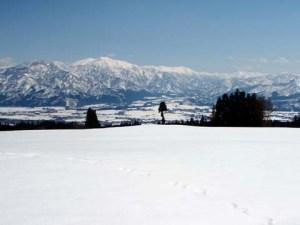 手前の雪の上を横切っているのは、動物の足あとです。