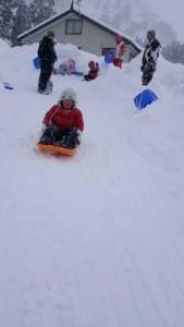 雪の斜面でスリル満点のそり遊び。