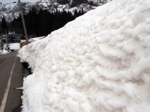 雪がとけ、雪のカベの表面が少し波打ったような状態だったところに、黄砂混じりの雪が降り、写真の様になりました。