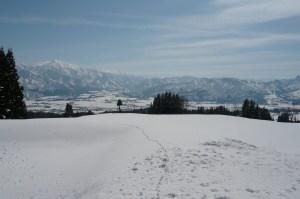 「田んぼのイロハ」で使った田んぼの今の様子。2m近くある雪の壁を上です。表面には動物の足跡が。 2月29日撮影