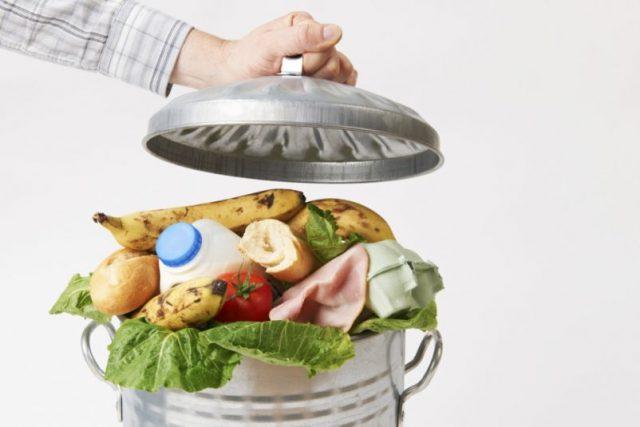 comida, alimentos, basura, deshidratar, congelar