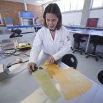 Un plástico biodegradable a base de nopal mexicano