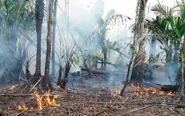 derrames, incendios, contaminación, ecocidios
