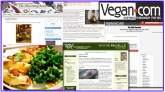 vegan blog round up