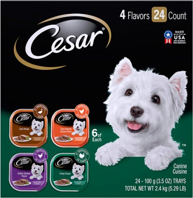 CESAR Gourmet Wet Dog Food