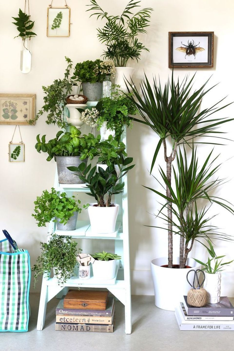 Cool Plant Stand Design Ideas for Indoor Houseplants ... on House Plant Stand Ideas  id=37655