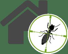 organic Termite Pest Control Raleigh
