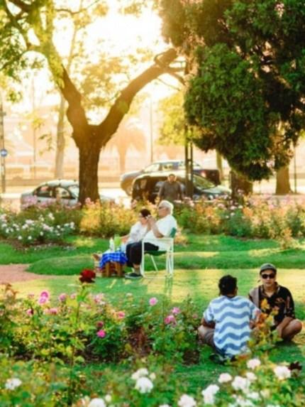 Vecindarios más verdes = mejor salud del corazón