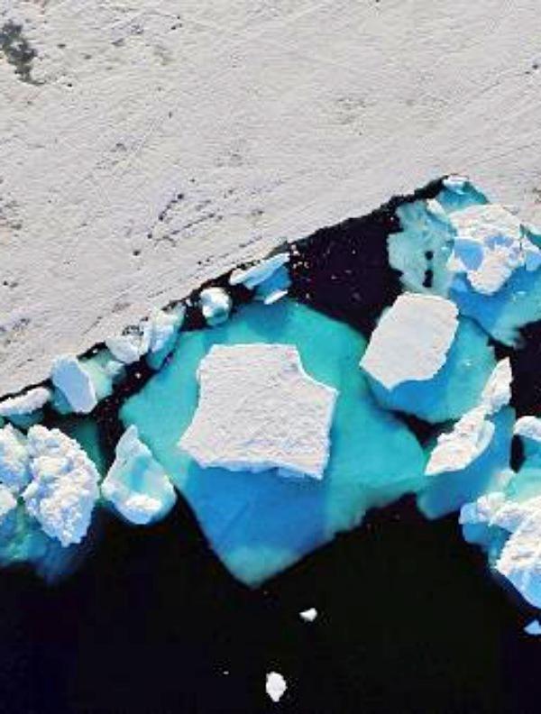 Las nueve 'claves' en la naturaleza de la crisis climática