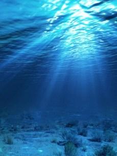 Los datos del nivel del mar confirman 'cambio climatico'