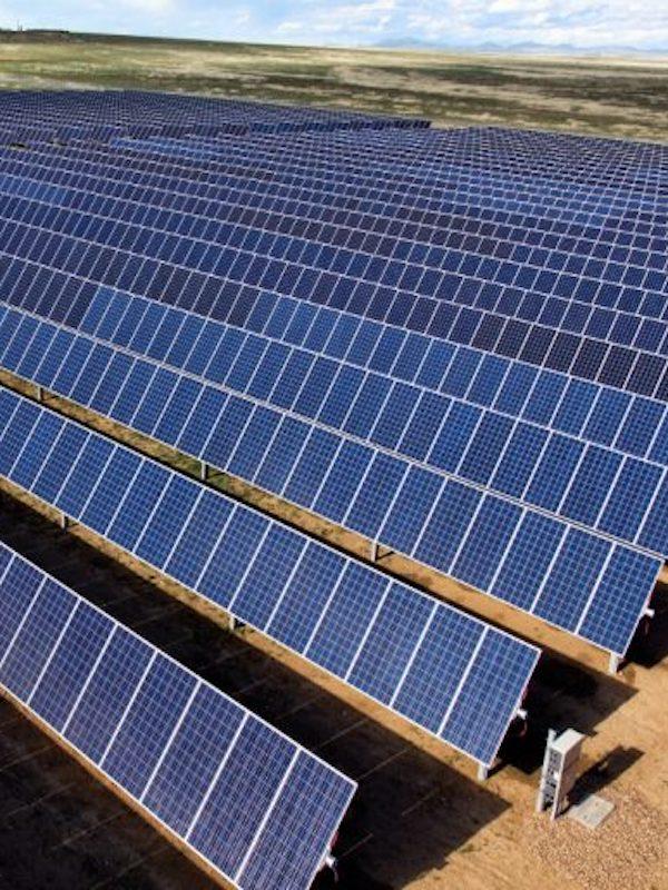 Bravo por las renovables y el ingenio, un apicultor producirá miel 'solar' en las plantas fotovoltaicas de Endesa en Carmona (Sevilla)