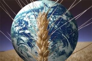 La seguridad alimentaria y el cambio climático