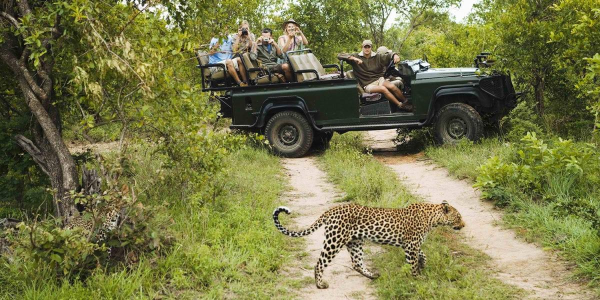 Park-Ranger-African-Safari-Guide-EcoTraining