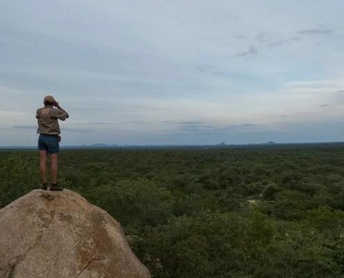 Karongwe Game Reserve, South Africa Landscape Gazing - Ecotraining