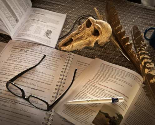 What to expect or how to prepare for FGASA Theory Exam - FGASA Online Course - Nature Enthusiast