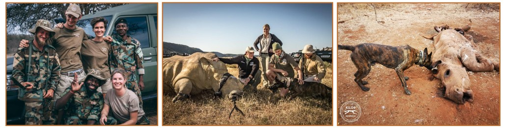 How to become a Game Ranger or Safari Guide With A Wildlife Course