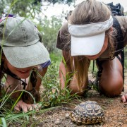 The Ladies Guide to the Bush - Ecotraining