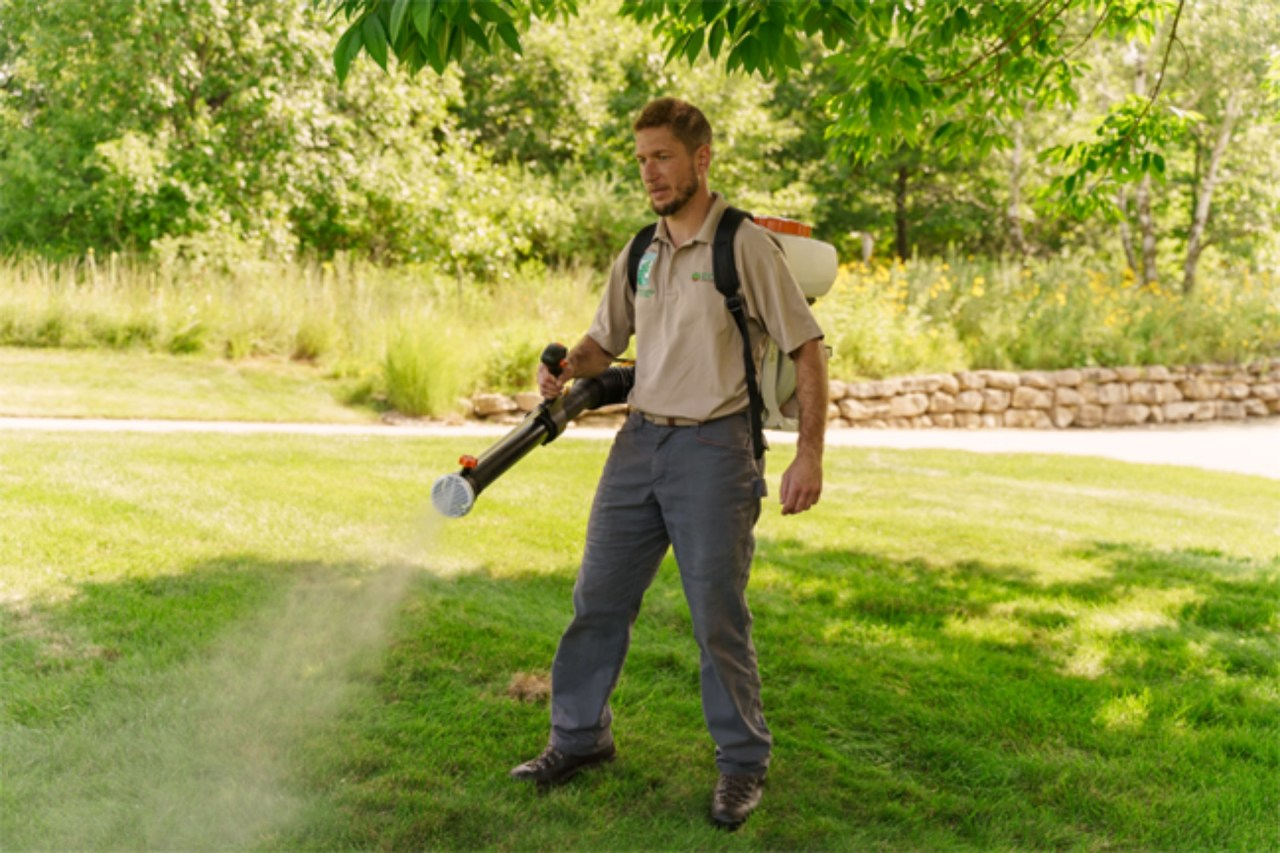 Worker using organic spray for mosquito treatment