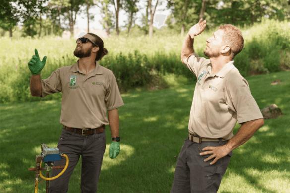 certified arborists applying emerald ash borer treatment