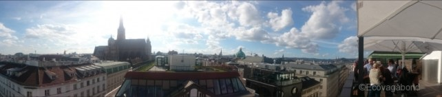 Rooftop View with Stephansdom