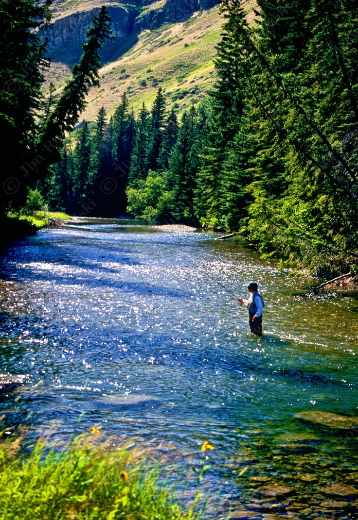 Gallatin National Forest Has Something For Everyone