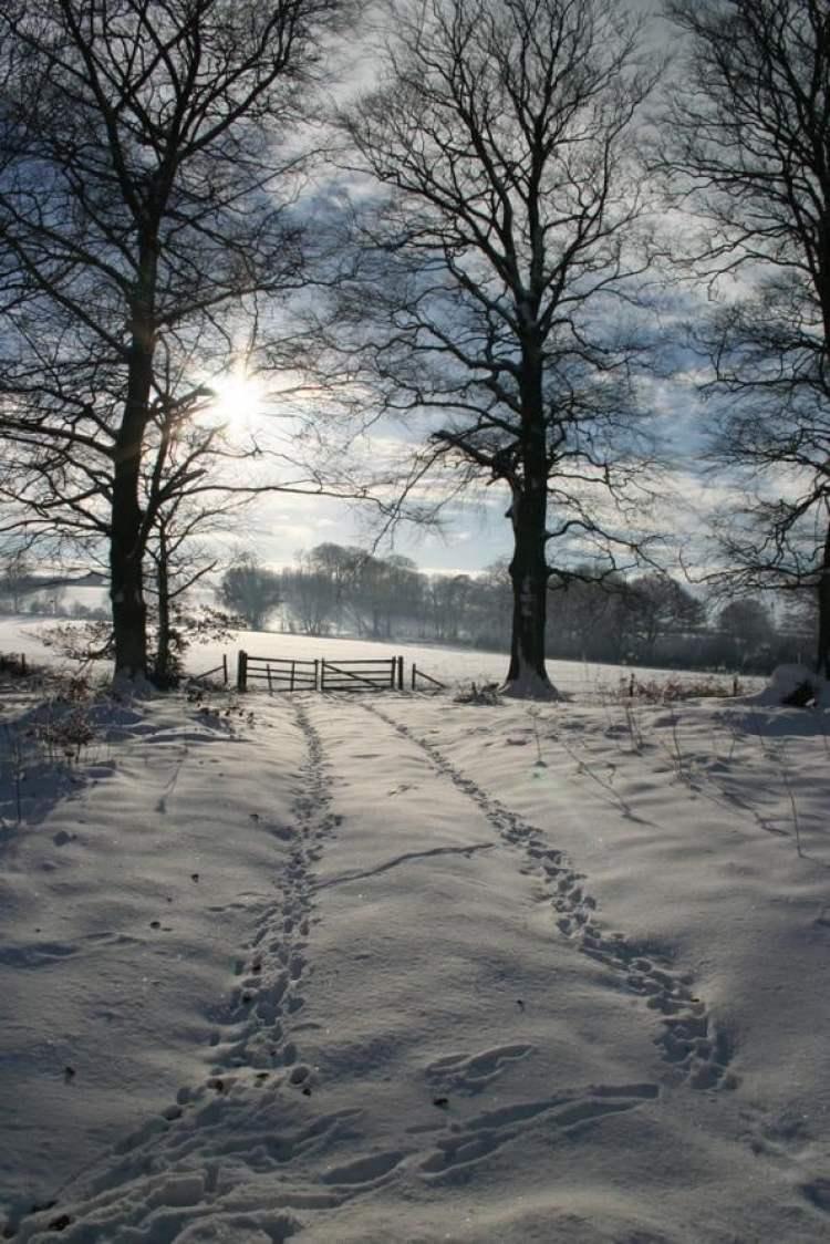 Howardian Hills, Yorkshire, England