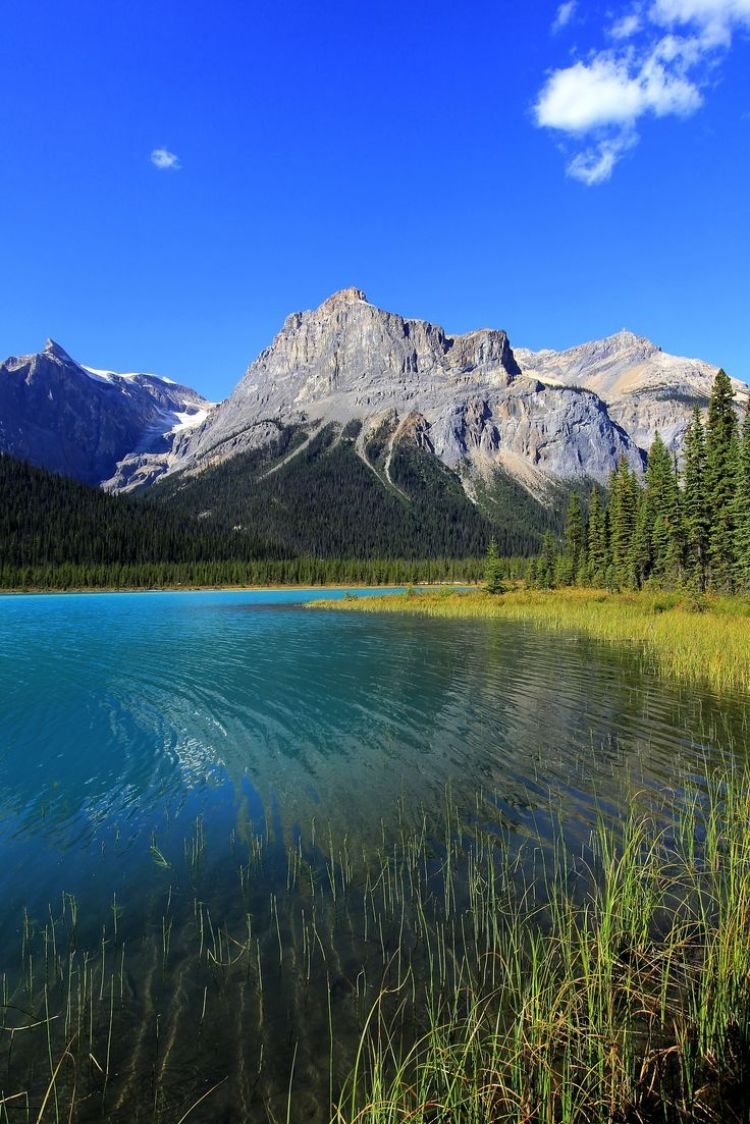 The Call Of Nature Yoho National Park British Columbia