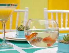 Goldfish bowl as a dining table centerpiece