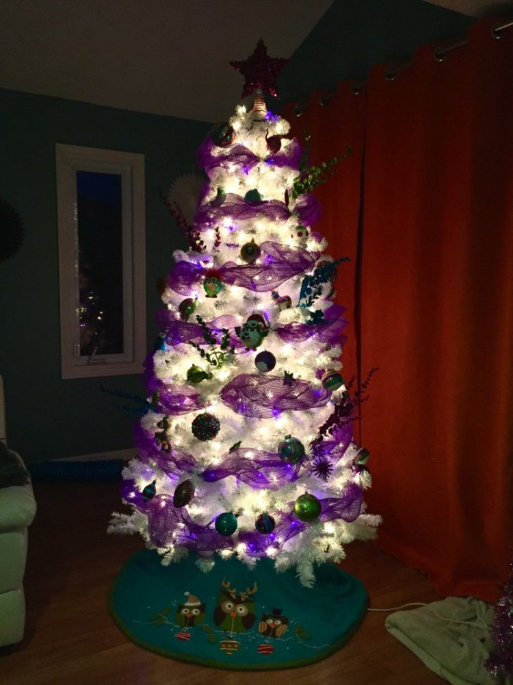 2 white christmas tree with white and purple lights and purple ribbon