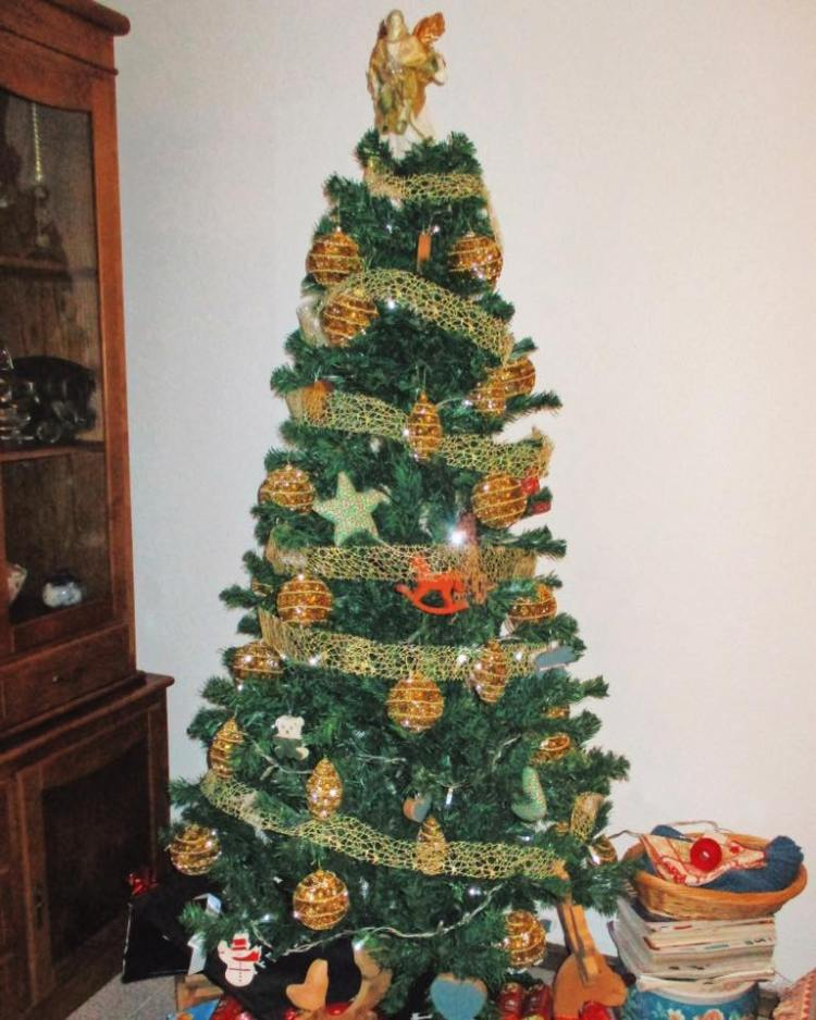 awardwinning makingitarealchristmas christmastree christmas f09f8e84