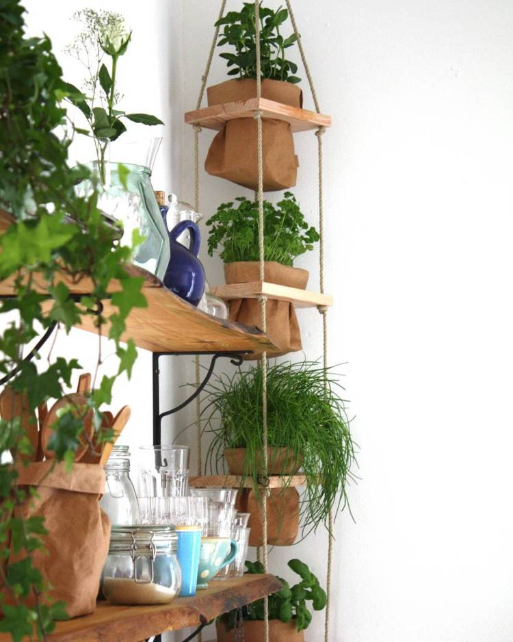 #citygarden #urbanfarming #urbanfarm #vegetablegarden #urbangardening #growyourown