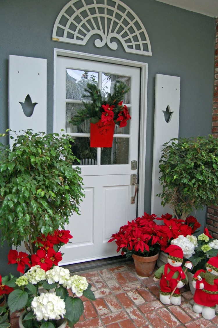 Find Perfection With Poinsettias
