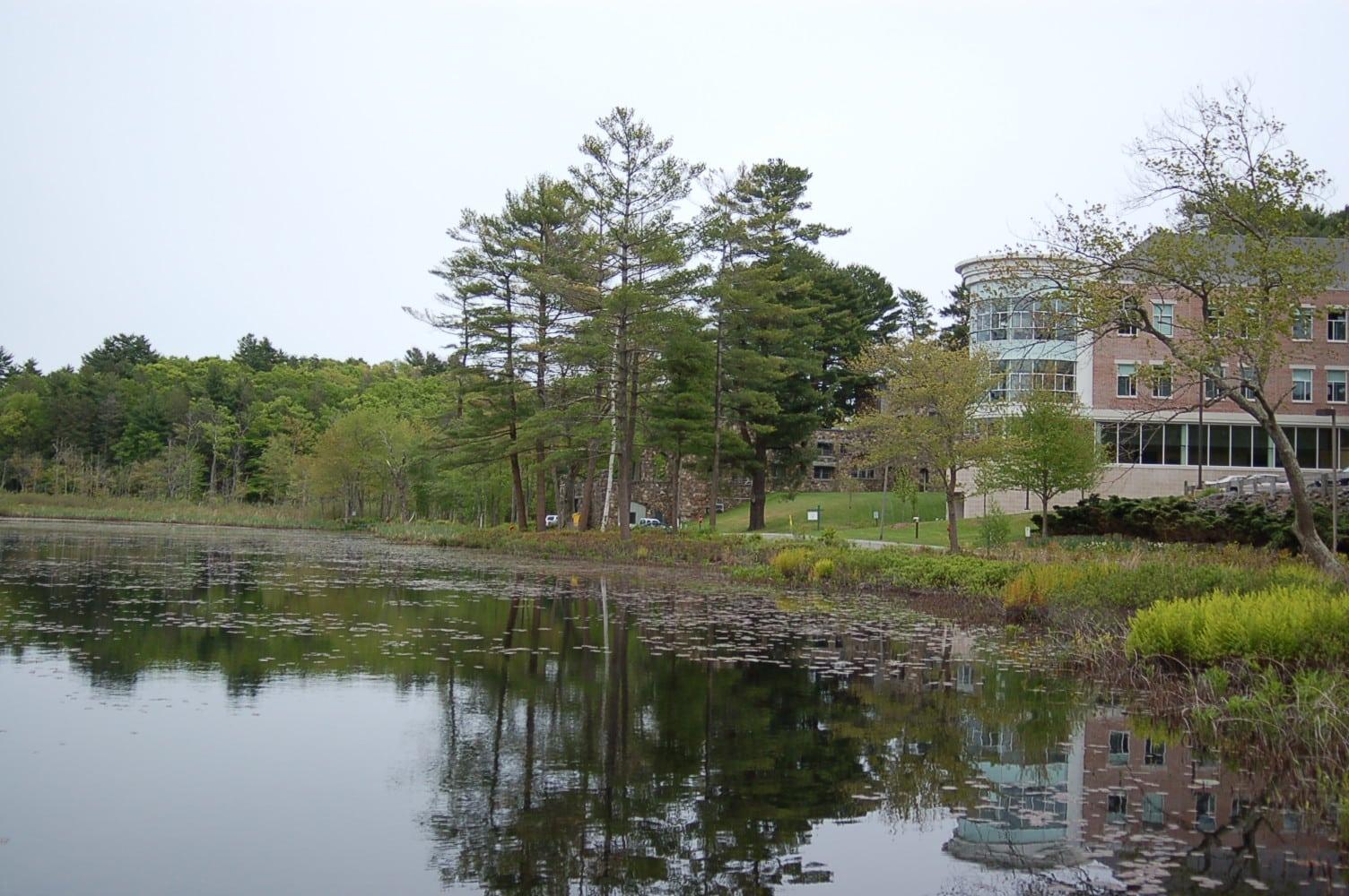 Pond Design Online