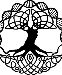Devas Center – Ayahuasca, shamanism and coaching