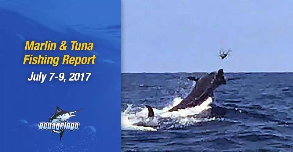 Marlin & Tuna Fishing Report, July 7-9, 2017