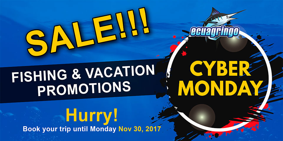 Cyber Monday Galapagos Last Minute Special!