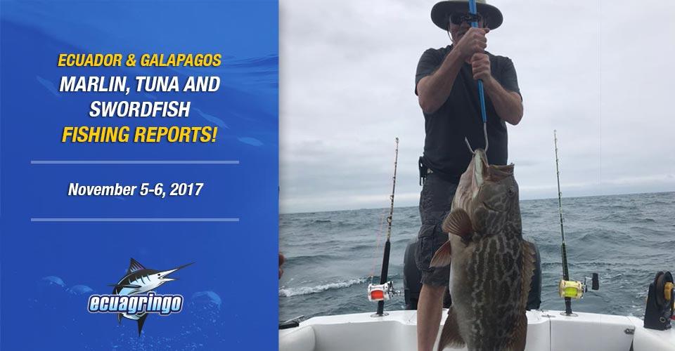 marlin tuna swordfish fishing report ecuador galapagos manta 20171109-00