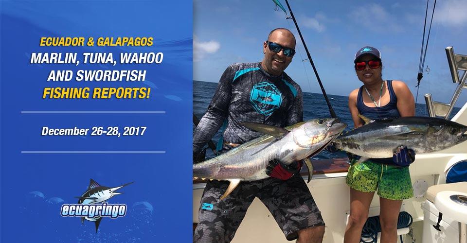 Blue marlin eating it up in Manta and the tunas swarming the Galapagos!