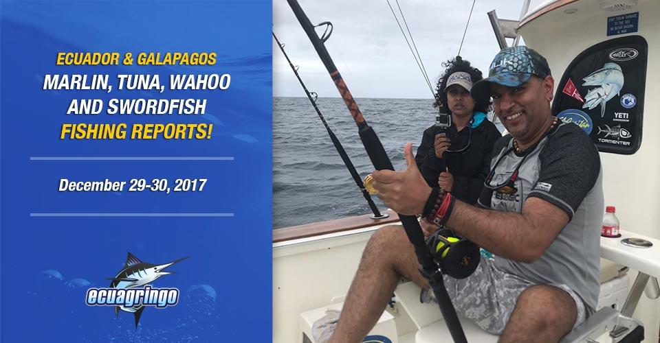 Fantastic End Of 2017 Blue Marlin Bite in Manta