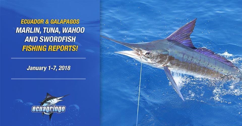 fishing reports 20180109 marlin tuna wahoo swordfish ecuador galapagos manta 01