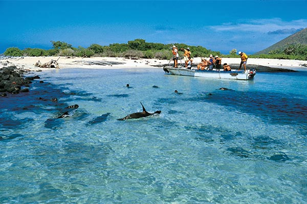newsletters 20180219 galapagos much more than the ultimate angler destination 05