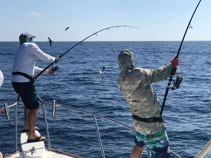 fishing reports 20180302 marlin tuna wahoo swordfish ecuador galapagos manta 04