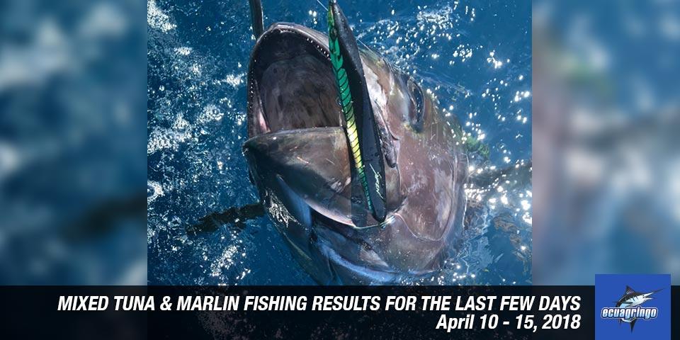 fishing reports 20180416 marlin tuna wahoo swordfish ecuador galapagos manta 01