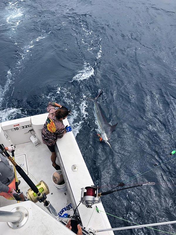 fishing reports 20181012 marlin tuna wahoo swordfish ecuador galapagos manta 01